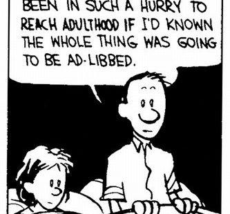 Calvin y Hobbes - Vida Adulta